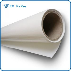 Single Plastic Single Silicon Release Paper